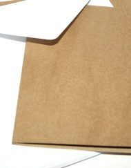 Pure Kraft Card Blanks & Envelopes