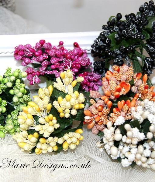 mixed flower buds
