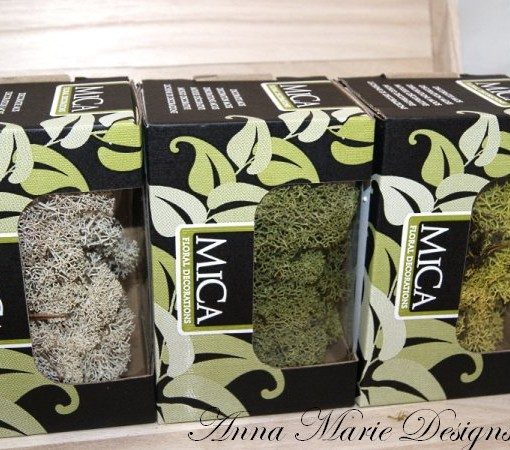 natural moss box