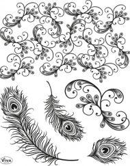 viva peacock feathers