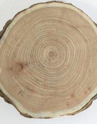 wooden slice