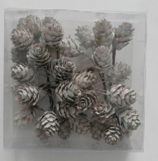 pine cones white washed