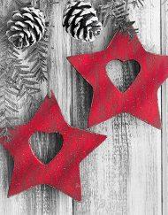 X HANGING STARS napkin