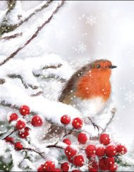 X ROBIN IN SNOW napkin